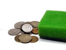 Monedas y esponja que se lava (blanqueo de dinero) Fotografía de archivo