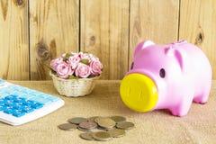 Monedas y flores rosadas de la calculadora de la hucha del cerdo Foto de archivo libre de regalías