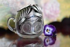 Monedas y violeta Imagen de archivo