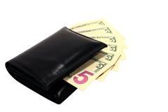 Monedero con los dólares Imagenes de archivo