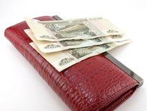 Monedero y dinero Foto de archivo
