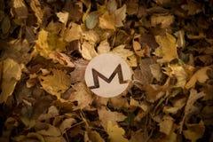 Monero valutasymbol på Autumn Leaves fotografering för bildbyråer