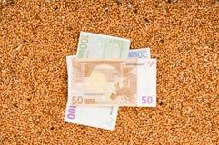 Monetär skörd royaltyfri fotografi