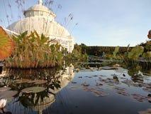 Monets Garden  Royalty Free Stock Photo