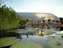 Monet' Garden  Stock Image