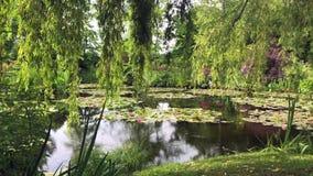 Monet Garden i Giverny - Frankrike arkivfilmer