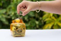 monet pojęcia ręk pieniądze stosu chronienia oszczędzanie Zdjęcie Royalty Free