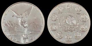 Moneta d'argento di investimento Immagini Stock