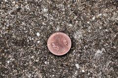 Moneta d'ottone del bitcoin Immagine Stock Libera da Diritti