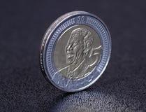 Moneta del Nelson Mandela. fotografia stock libera da diritti