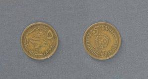 Moneta dell'ottone del Libano Immagini Stock Libere da Diritti