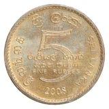 Moneta della rupia dello Sri Lanka Fotografia Stock
