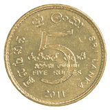 Moneta dello Sri Lanka della rupia 5 Immagini Stock