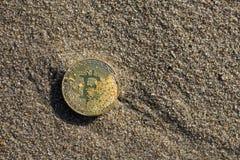 Moneta di Bitcoin sull'oro di finanza dei soldi di affari della sabbia Immagine Stock