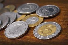 Moneta di zloty cinque Fotografie Stock Libere da Diritti
