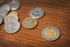 Moneta di zloty cinque Fotografia Stock