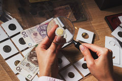 Moneta di zloty nella mano del ` s della donna tramite la lente d'ingrandimento Fotografie Stock Libere da Diritti