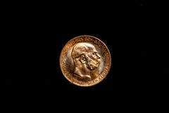 Moneta dorata Fotografie Stock Libere da Diritti