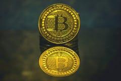 Moneta dorata di Bitcoin, concetto di cryptocurrency, concetto del mercato del bitcoin, cryptocoins Fotografia Stock Libera da Diritti
