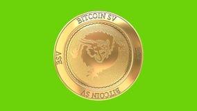 Moneta dorata di filatura di Bitcoin SV illustrazione vettoriale