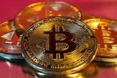 Moneta dorata fisica del bitcoin di Cryptocurrency sul backgrou variopinto Fotografia Stock