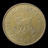 Moneta macedone dal 2001 Immagini Stock