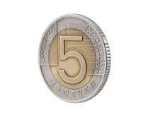 Moneta polacca di zloty cinque Fotografia Stock
