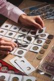 Moneta raccoglibile nella mano del ` s della donna Fotografie Stock Libere da Diritti
