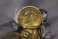 Moneta w lodzie Obrazy Stock