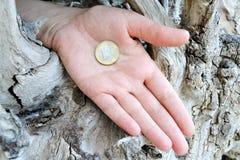 Moneta w ręce Zdjęcie Royalty Free