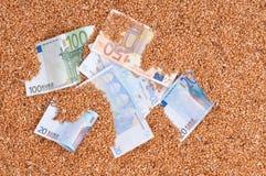 Monetair gewas stock afbeeldingen