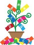 Monetarny drzewo zawiera gotówkę Zdjęcia Stock