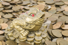 Monetary frog Stock Images