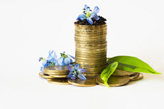 Monetary growth,  bank Stock Images