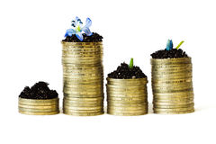 Monetary growth,  bank Royalty Free Stock Photos