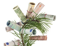 Monetary tree Stock Photo