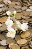 Monetary tree. Stock Photos
