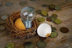 Monete con gli alfabeti di legno e guscio d'uovo per contare e Fotografie Stock