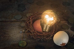 Monete con gli alfabeti di legno e guscio d'uovo per contare e Immagini Stock Libere da Diritti