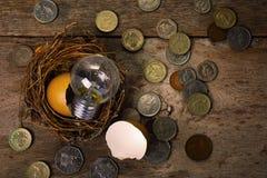 Monete con la lampadina e Eggshel per contare e Fina Fotografie Stock