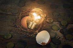 Monete con la lampadina e Eggshel per contare e Fina Immagine Stock