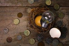 Monete con la lampadina e Eggshel per contare e Fina Fotografia Stock Libera da Diritti