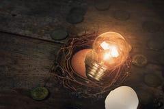Monete con la lampadina e Eggshel per contare e Fina Fotografia Stock
