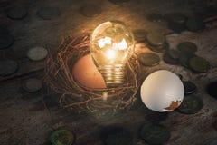 Monete con la lampadina ed il guscio d'uovo per contare ed il concetto finanziario Immagini Stock