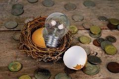 Monete con la lampadina ed il guscio d'uovo per contare ed il concetto finanziario Fotografia Stock Libera da Diritti