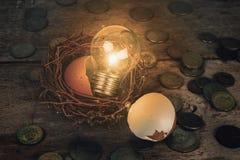 Monete con la lampadina ed il guscio d'uovo per contare ed il concetto finanziario Immagine Stock Libera da Diritti