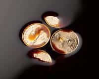 monete del dollaro nel petrolio greggio Fotografie Stock Libere da Diritti