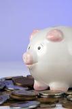 Monete del mondo e della Banca Piggy Immagine Stock Libera da Diritti