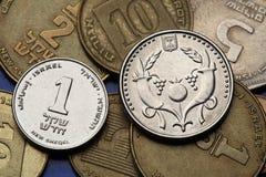 Monete dell'Israele Fotografia Stock