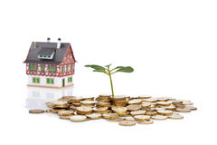 Monete della pianta verde e poca casa Fotografia Stock